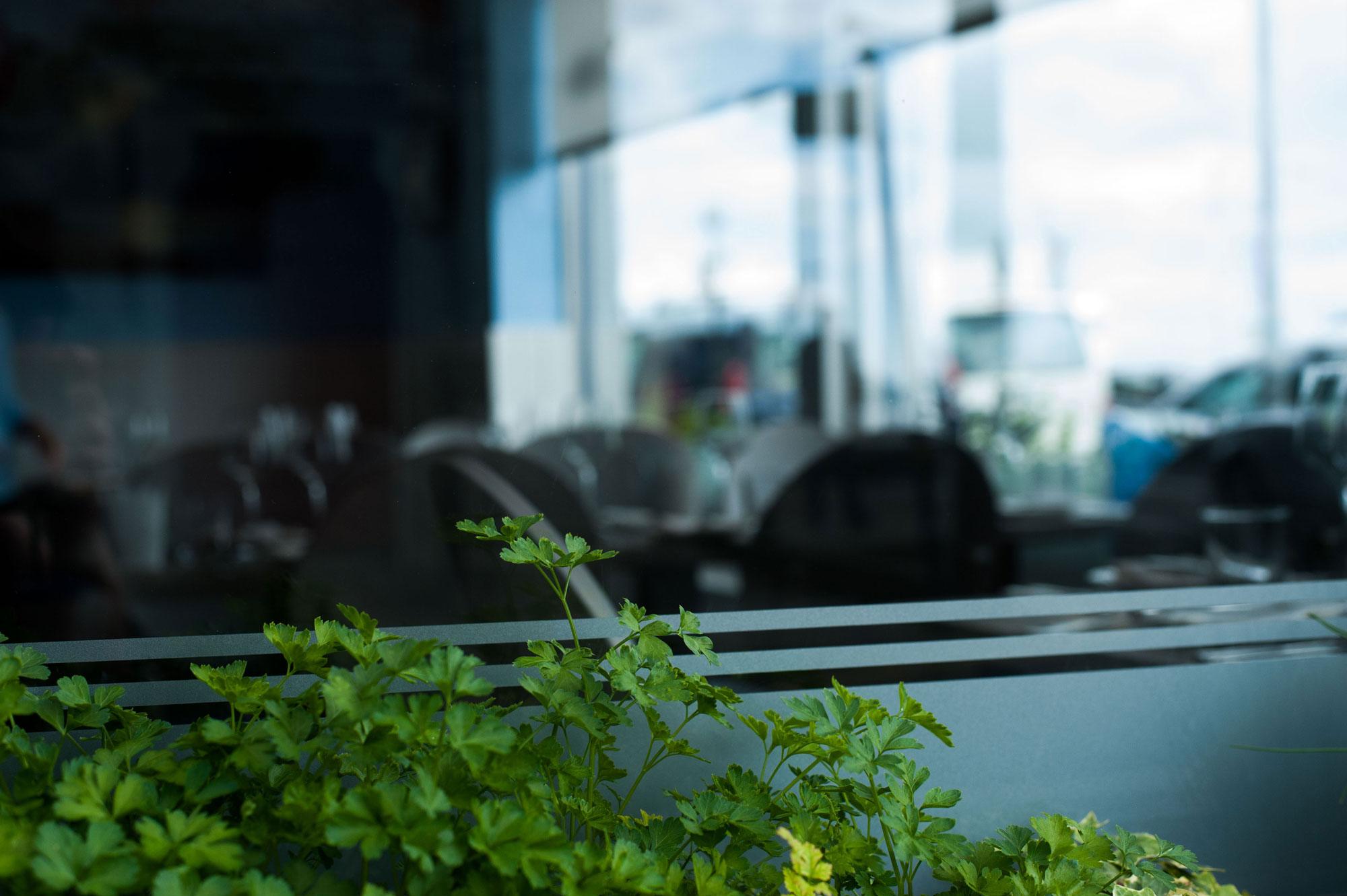 la cote window wexford